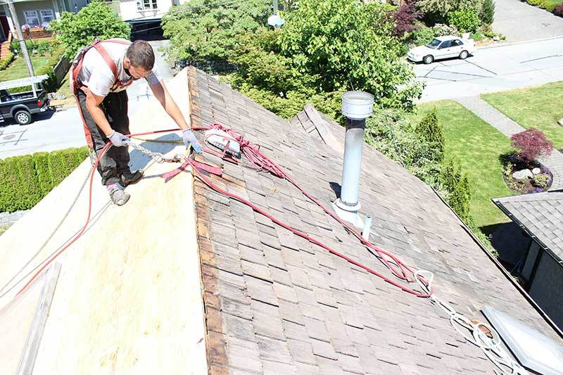 asphalt shingle roof replacement reroofing