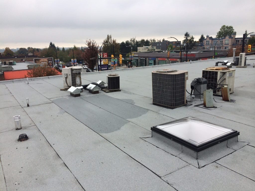 new commercial flat roof