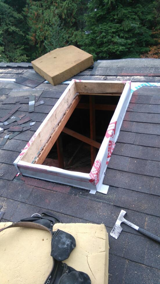 Repair or replace Roof skylight