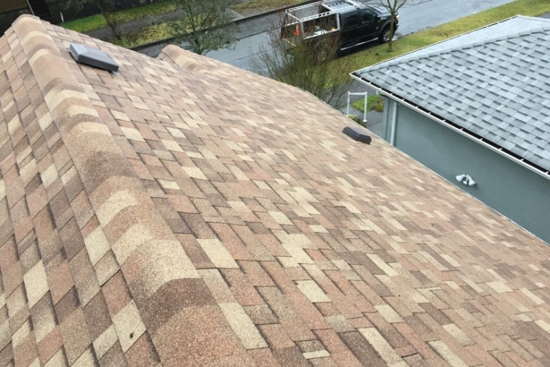 Shingle roof roofers